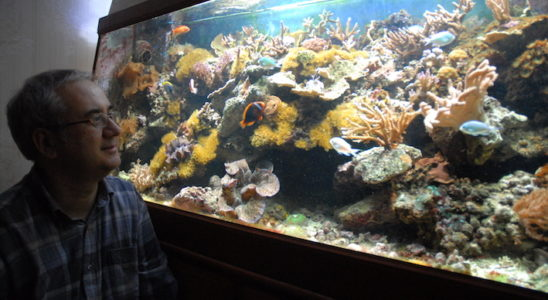 Jean-Paul devant son aquarium. Photo : Philippe Royer