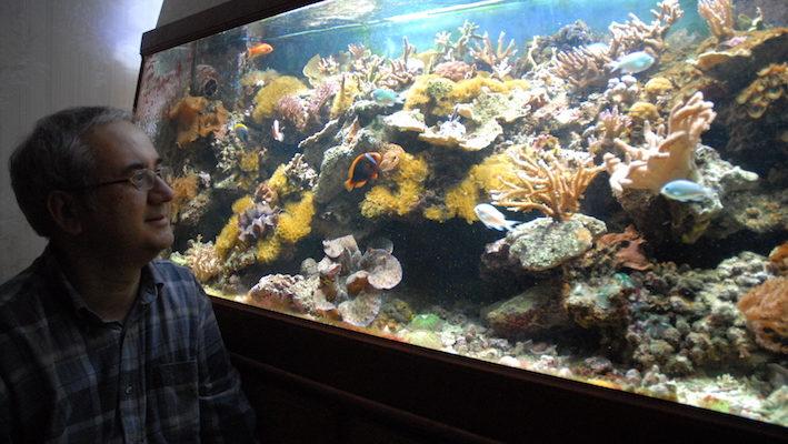 Jean-Paul devant son aquarium. Photo : Philippe Royer
