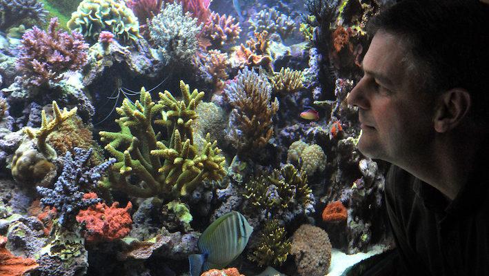 Max devant son aquarium ! Photo : Philippe Royer