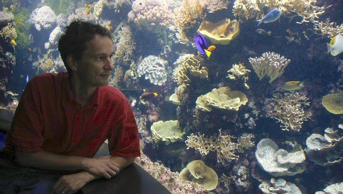 Dominique Berthélémy est responsable du pavillon tropical d'Océanopolis. Il a amplement participé à la qualité des collections de cet aquarium public exceptionnel. Photo : Océanopolis