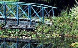 La présence d'un pont est autant esthétique que symbolique, puisqu'il permet le passage « entre deux mondes ». Photo : Aqua Press (Les Jardins d'Eau)