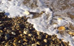 L'écume est l'un des éléments incontournables du décor de toutes les plages du monde. Photo : Aqua Press