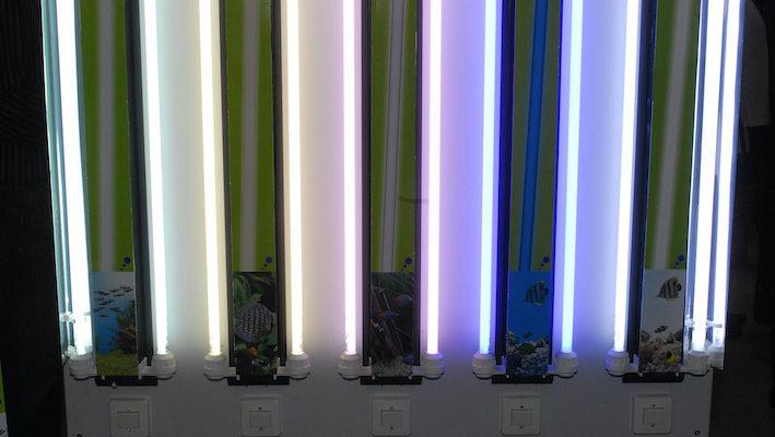 L'alimentation des tubes fluorescents au format T5 s'effectue par un ballast électronique. Énergétiquement efficace, il fonctionne à haute fréquence et ralentit ainsi l'usure progressive des lampes. Photo : Aqua Press