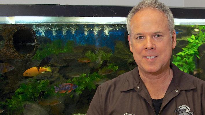 Gary Bagnall, devant un aquarium installé dans les locaux de Zoo Med. Photo : Zoo Med