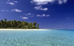 Le lagon est une zone particulière du récif sur le plan écologique. Cet habitat calme est particulièrement équilibré quant au recyclage de la matière. Photo : Aqua Press