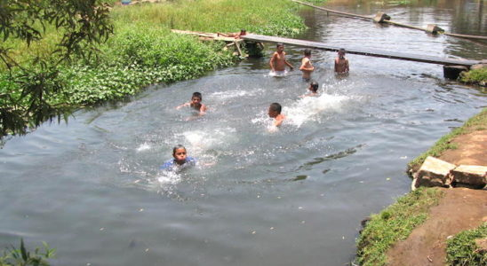 Au Mexique, il est très fréquent de voir des locaux venir se baigner ou laver son linge dans les différents points d'eau. Ici à Cupatitzio, une rivière dans laquelle on retrouve Allotoca catarinae et Ilyodon whitei. Photo : Jean-François Lorieux