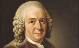 Carl von Linné, naturaliste suédois (1707-1778), est le père fondateur de la systématique et de la taxinomie, dont il diffusa les principes grâce à son ouvrage « Systema naturae ». La première édition date de 1735 et ne comptait qu'onze pages ; mais, sans cesse remanié, détaillé, et élargi par Linné à travers une succession d'éditions durant 35 ans, le système linnéen finit par nomenclaturer le vivant de façon très complète.