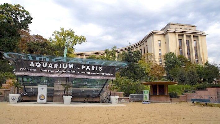 Un écrin de verdure et le prestigieux Palais de Chaillot entourent l'établissement. Photo : Sabine Penisson